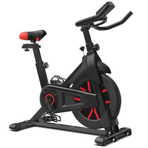 Lifespan SP330 Spin Bike