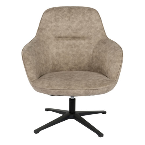 112237 a 500x500 - Cadmus Occassional Swivel Chair