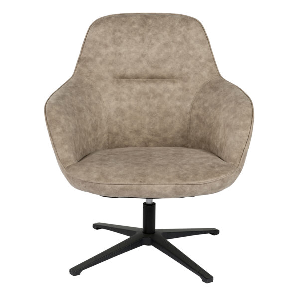 112237 a 600x600 - Cadmus Occassional Swivel Chair