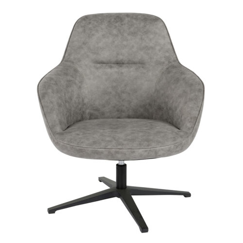 112238 a 500x500 - Cadmus Occassional Swivel Chair